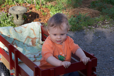 Wagon Ride!!!