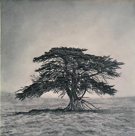 Memory Marker- Jacks Tree 2, SOLD