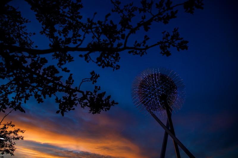 100920-Art_Luminous_Wind-021.jpg