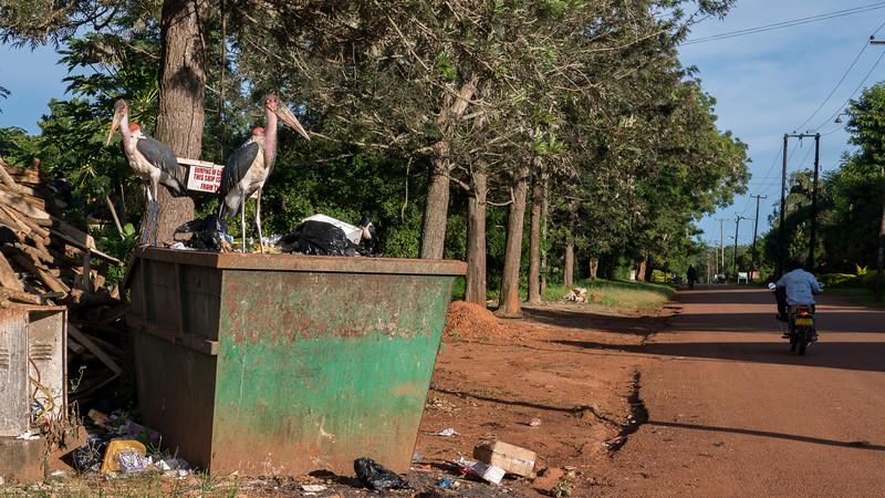 Jinja-Uganda-30.jpg