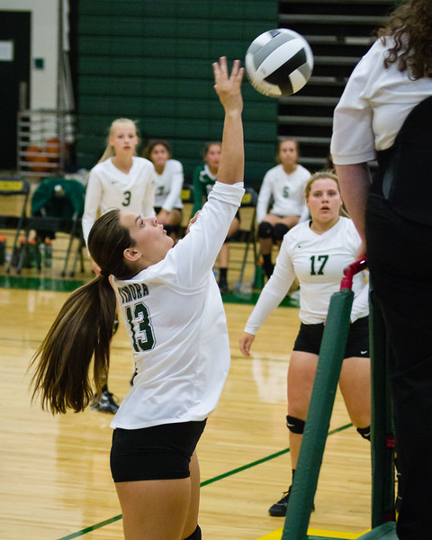 ths-vb-jv-evergreen-20170831-294.jpg