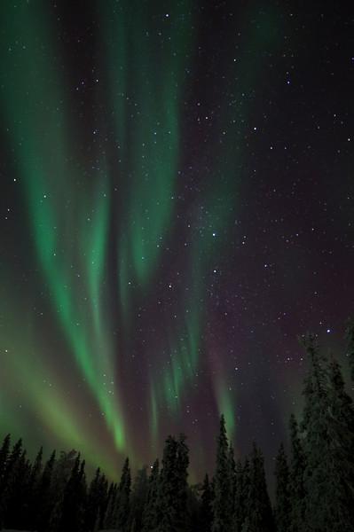 Northern Lights at Ruka