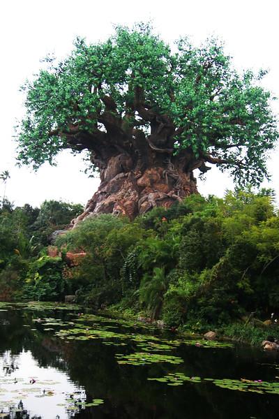 Tree_of_Life_3.jpg