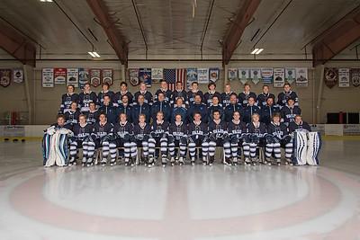 Ice Hockey 2017