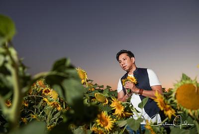 Nhan Ai  | Sunflowers