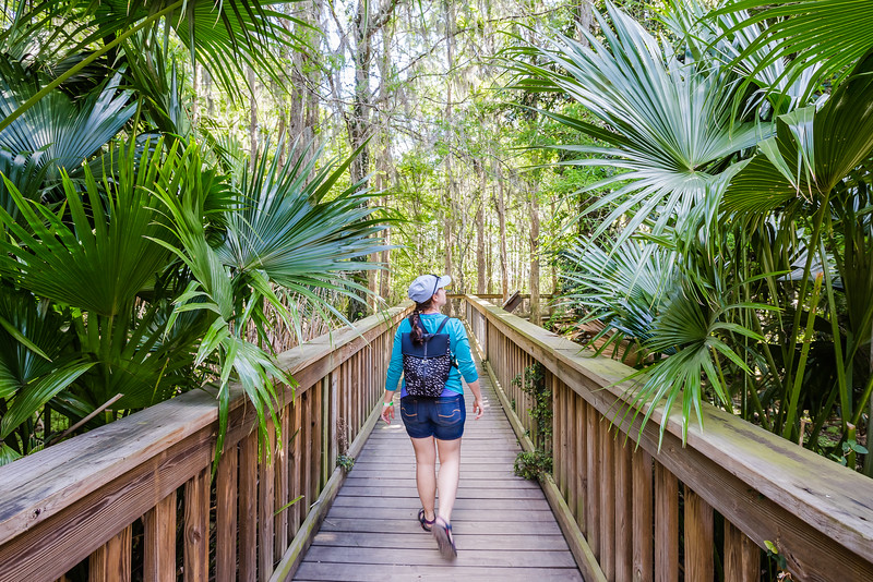 Hiking at Gatorland, Kissimmee, Florida