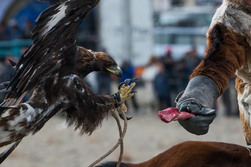 Mongolia09211.jpg