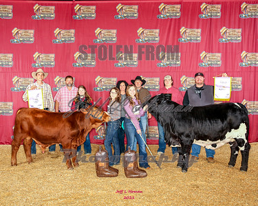 2021 Dixie National Livestock Show