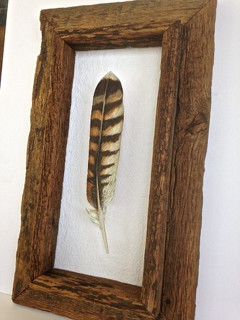 Chris Correale Feather Art