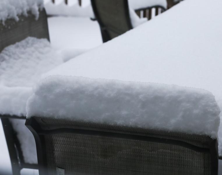 Fun in the snow 022615-1.jpg