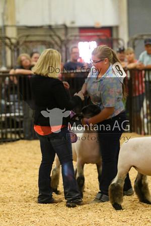 Open Market Lamb