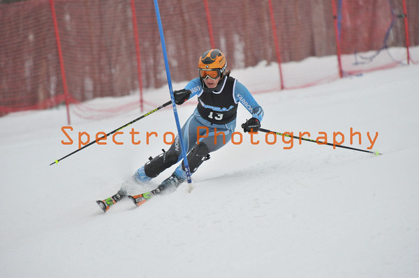 OFSAA Alpine 2011 - Level II Slalom