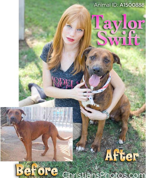 Taylor_BA2 copy.jpg