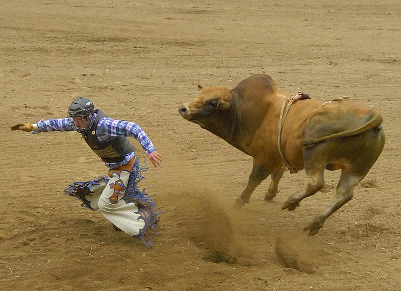 Coombs Bullarama-2008-432A.jpg