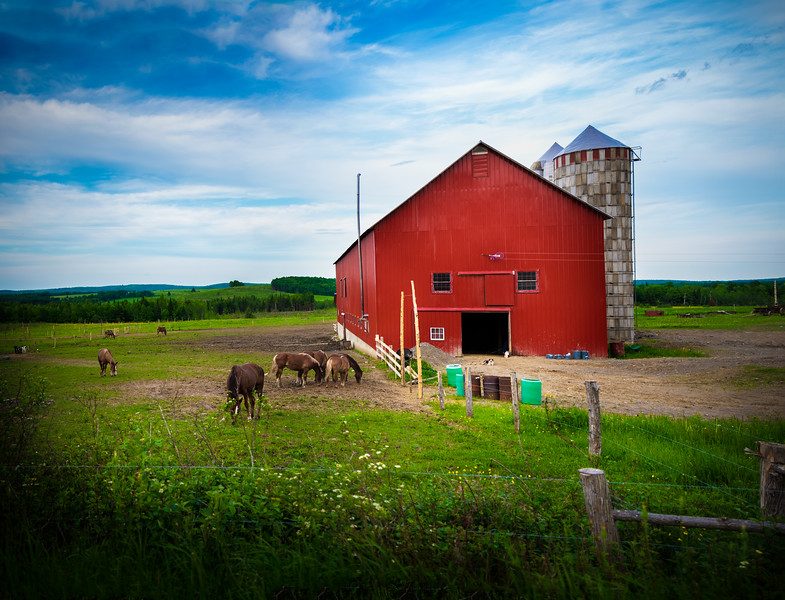 Red Amish Barn-2.jpg