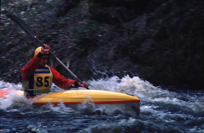 Tryweryn 1985