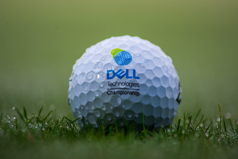 dell ball (1 of 1).jpg