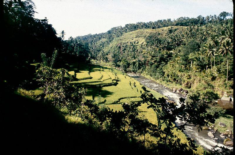 Indonesia2_008.jpg