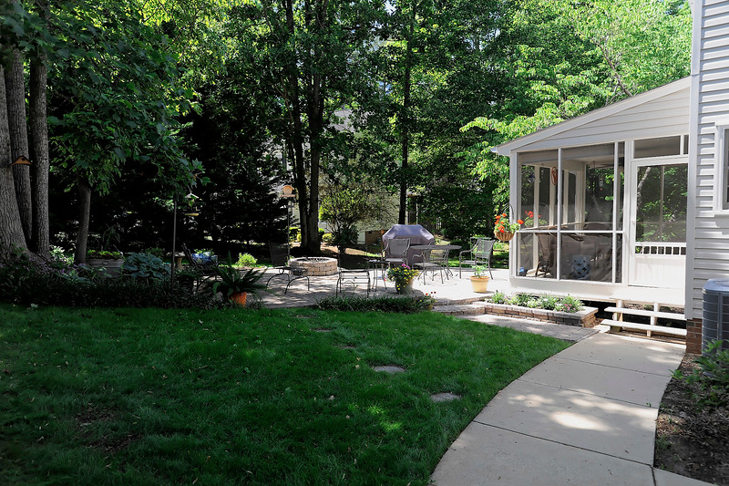 New Backyard Grass.jpg