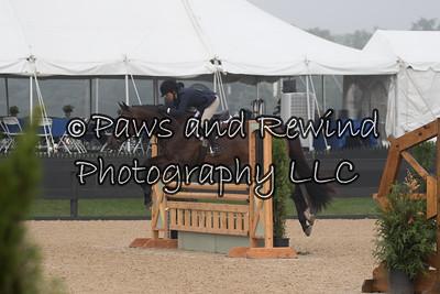 3'3 Adult Equitation & AO Hunter 36+