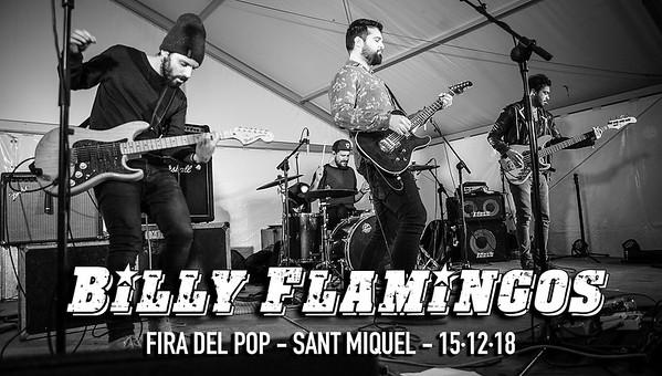 BILLY FLAMINGOS FIRA DEL POP