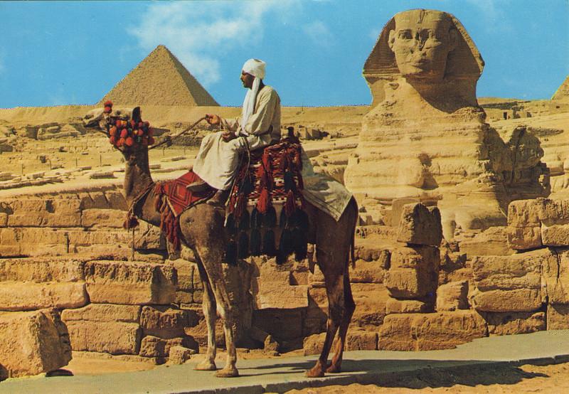 Camel_rider.jpg