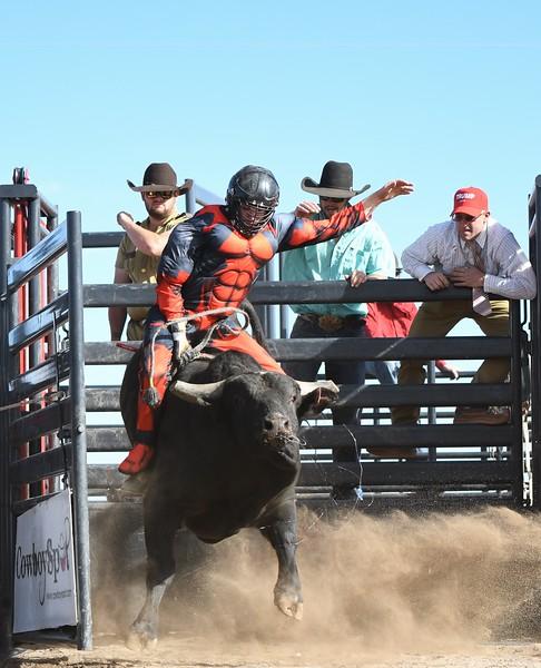Benefit Bull Ride