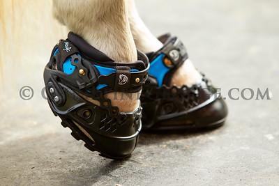 Explora Magic Boots