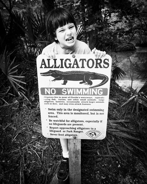 alligator sign.jpg