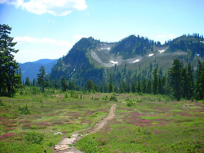 Sheep Lake - Mt Rainier - August 2004