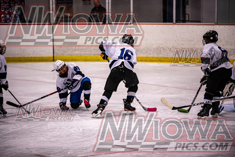 2019 Boji Blizzard Sticks&Slides Pee Wee B Tournament