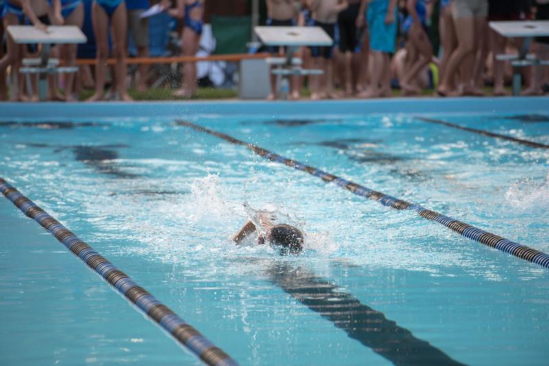 lcs_swimming_kevkramerphoto-787.jpg
