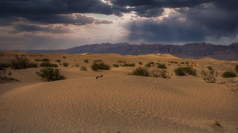 DV MEsquite Dunes.jpg