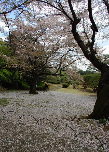 04-Japan07_1438.JPG