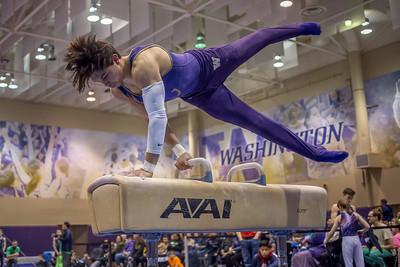 2018 UW Mens Gymnastics