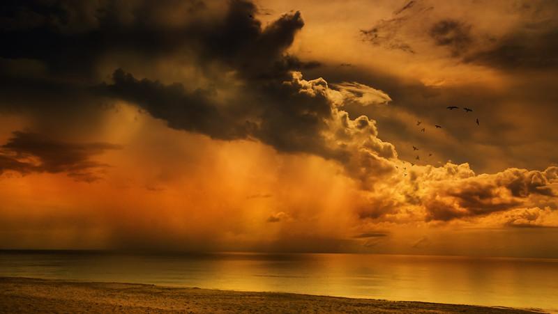 The Magic of Light-189.jpg