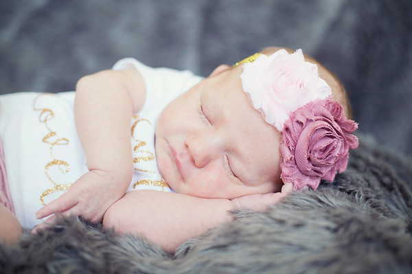 Lily's Newborn Portraits