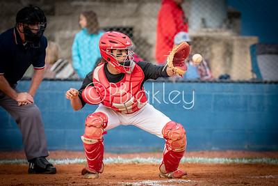 LHS Baseball (4-24-2018)
