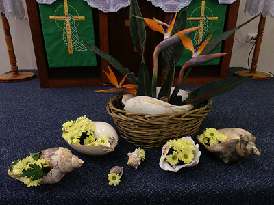 College Floral Display 2014