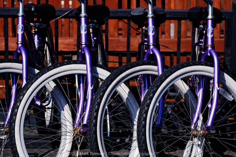 Bikes at the Earth Box Spa