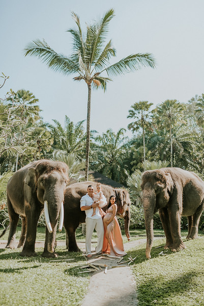 VTV_family_photoshoot_elephants_Bali_ (9).jpg