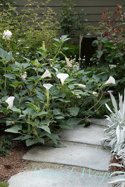 Lisa Bauer - designer's garden_1230.jpg