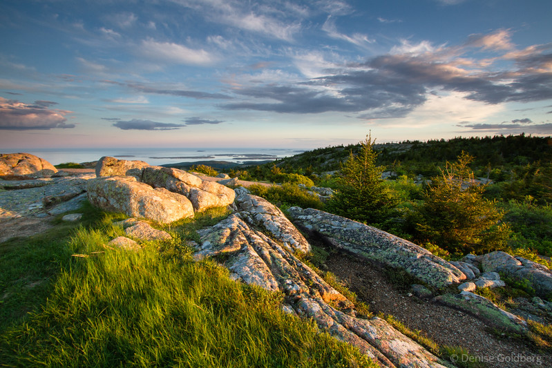 high on Cadillac Mountain in late day light