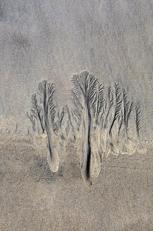 Sand Art/Tide Designs