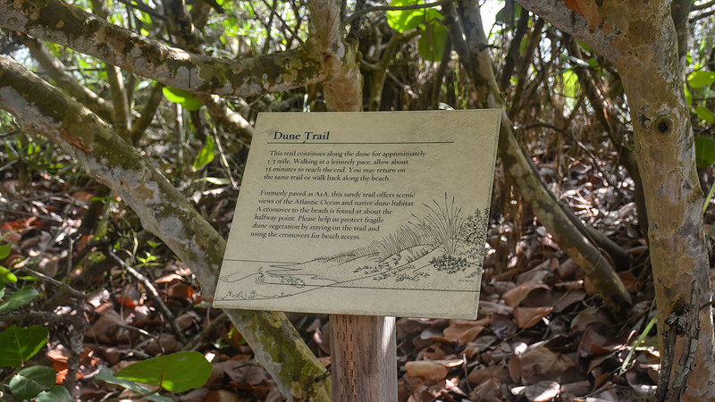Interpretive sign for Dune Trail