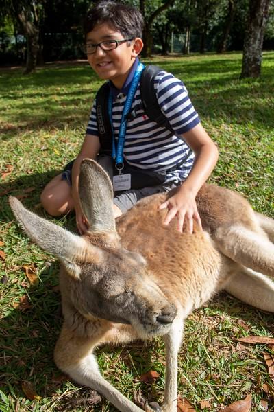 Australia_285.jpg