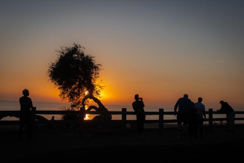 November 11 - Sunset worshippers in Santa Moinca.jpg