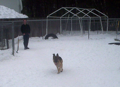 All Dogs Gym 2-21-2011