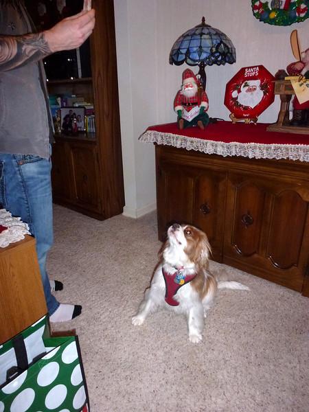 Christmas 2011 016.JPG