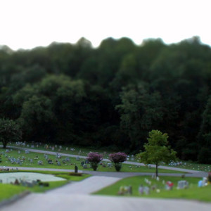 DSS #135 Tilt Shift Photography